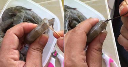 很少人知道的超快「3秒清理蝦腸」小撇步,只要用一根牙籤就好囉!再也不用吃蝦便便教學!
