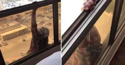 世界震驚!幫傭在7樓高的陽台「單手抓欄杆」求救,冷血女子只顧錄影看她「鬆手」拍下摔落畫面。