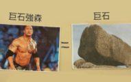 小五生認真做了「巨石強森 VS. 巨石」的爆笑自然科學報告,「共同點超爆笑」強森本人看到後親自推爆!