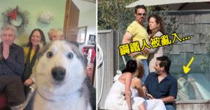 30張被毀掉但其實變得更好的「狗狗亂入照」。#12 這是不讓主人被求婚嗎?