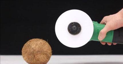 他拿A4紙自製「紙電鋸」,可以把椰子給切開嗎?