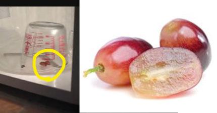 這就是為什麼你絕對不該微波被切成一半的葡萄!