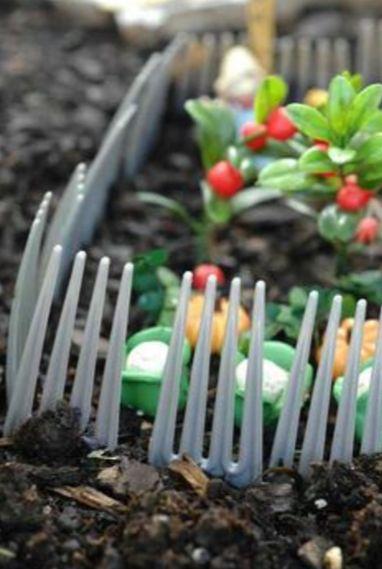 塑膠叉子用完絕對別丟!這樣插到花園裡效果啵兒棒!
