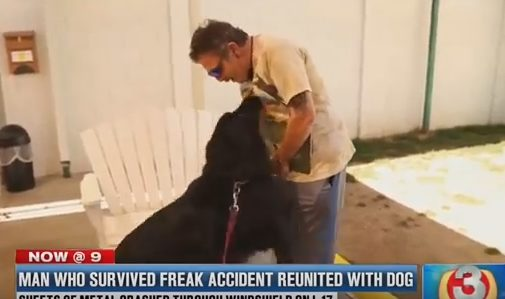 """Philip was transported to the hospital with non-life-threatening injuries, but Jessie was unharmed. While he recovered in the hospital, the Arizona Humane Society cared for Jessie as part of their <a href=""""http://www.azhumane.org/2017/03/17/man-dog-reunite-after-crash/"""" target=""""_blank"""">Emergency Service Program</a>, which provides a temporary home for pets whose owners are hospitalized. Finally, the duo was reunited."""