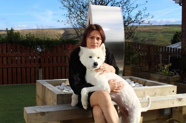 她送愛犬去剃毛很期待,剪完後「慘認不出模樣」狗狗沮喪都不想活了...