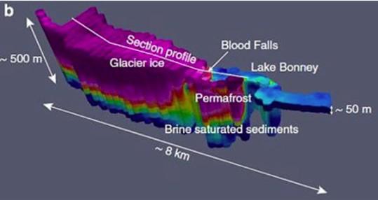 過了100年!科學家終於找到南極冰山「血瀑布」真相 網友:該不會每月一次?
