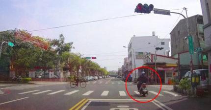 三寶在紅燈「慢慢偷跑」,一過街直接「神巧合玩完」網友:「爽感爆表」!