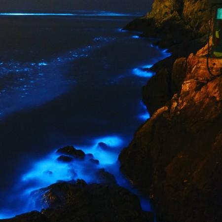 世界15大奇景「馬祖藍眼淚」宇宙大爆發!當地人:「一輩子沒看過這麼藍」《少年Pi》經典畫面感動再現!