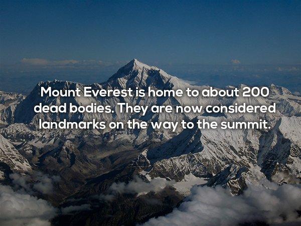 25個會讓你發現「死」有多有趣的「驚人死亡事實」。#22在印度死掉很開心!