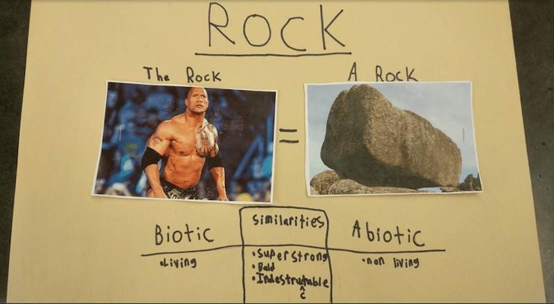 小五生認真做了「巨石強森 VS巨石」的科學報告 「共同點超爆笑」強森本人看到後親自狂推!
