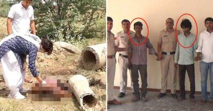 印度女拒婚遭「7男輪姦分屍」丟棄,找不到全部遺骸才「看到旁邊的狗」!