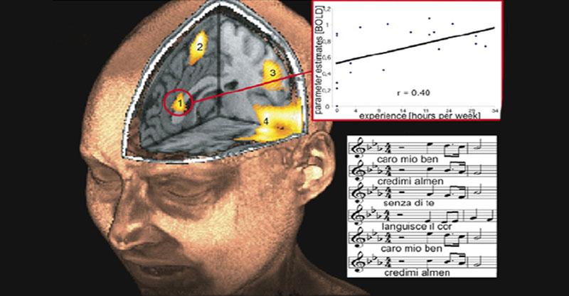 神經科學發明出的歌!證實可減少焦慮感65%!有效到聽的人會立刻想睡「開車絕不能聽」!