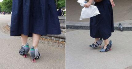 女士穿著鴿子到處走來走去,10個超可愛步驟讓你也能讓你把旁人嚇壞!