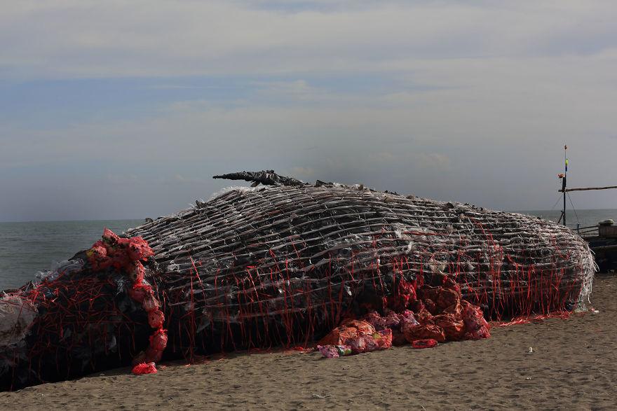 海灘上出現「巨大鯨屍」!走上前仔細看「身體細節」所有人慚愧!