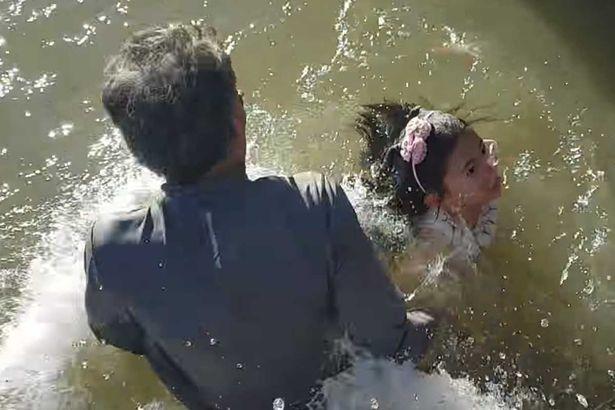 大海獅游近岸邊「遊客向他丟麵包」,下一秒海獅突然把小女孩咬住「拖進海裡」!(影片)