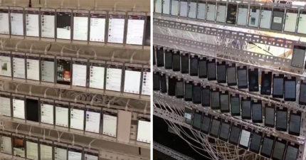直擊中國神秘「1萬台手機房間」!看螢幕才發現我們都被騙慘了!(影片)