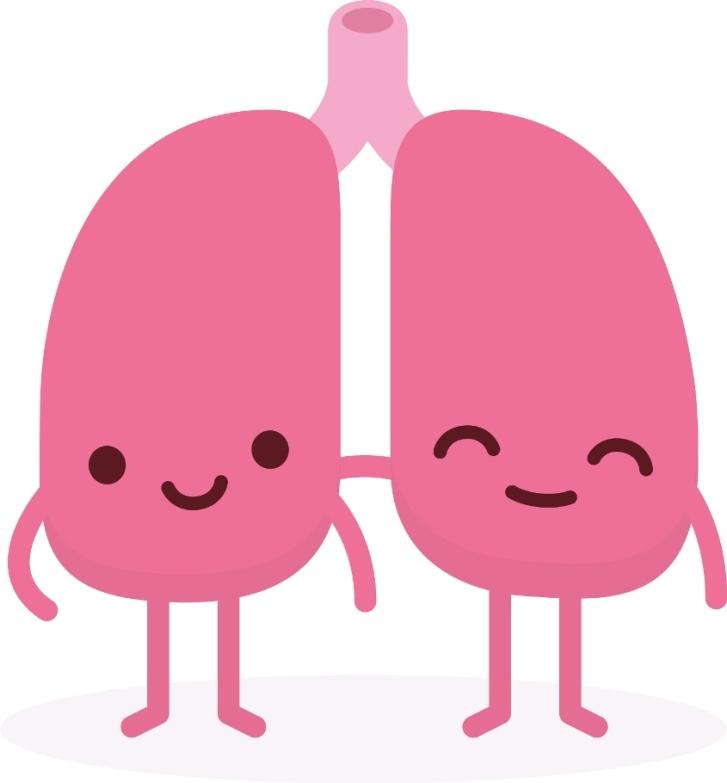 這就是你戒菸30分鐘後會發生的事情,「戒菸24小時後」的效果會讓你想一輩子都不吸菸了!