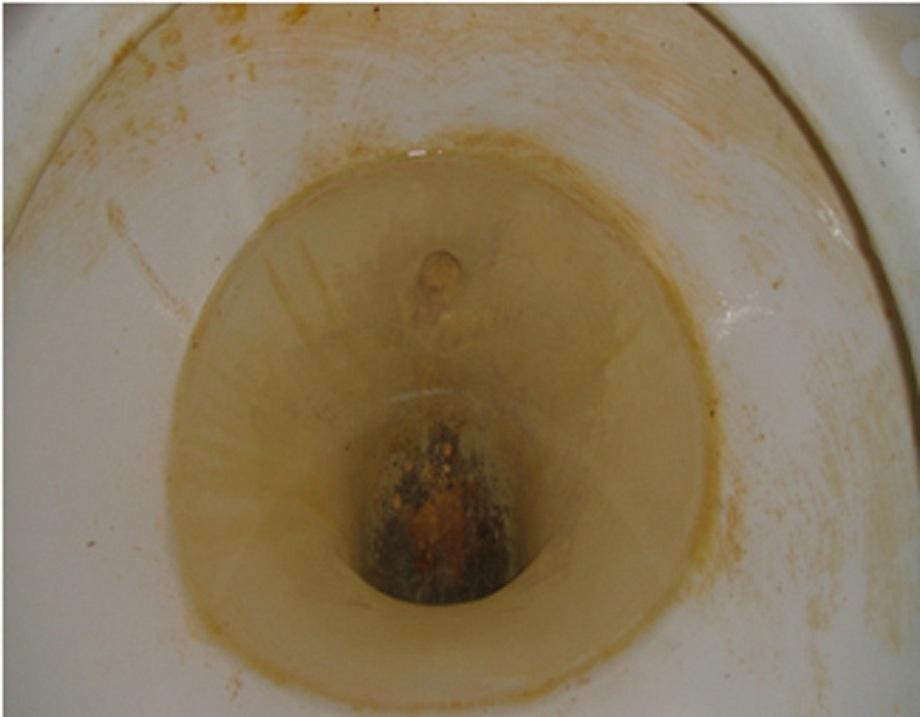 看到媽媽「把醋倒進馬桶」以為只是想倒掉,過了一個晚上去看真的太屌了!