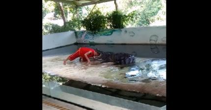 表演「頭放到鱷魚嘴巴裡」這麼多次都沒事,但意外只需要發生一次。(影片慎入)