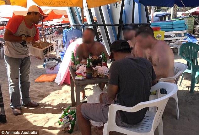 去巴里島遊玩的人小心了!賣的雞肉其實不是雞肉「吃下肚很嚴重」,動物協會:「不敢告訴他們真相...」 (影片)