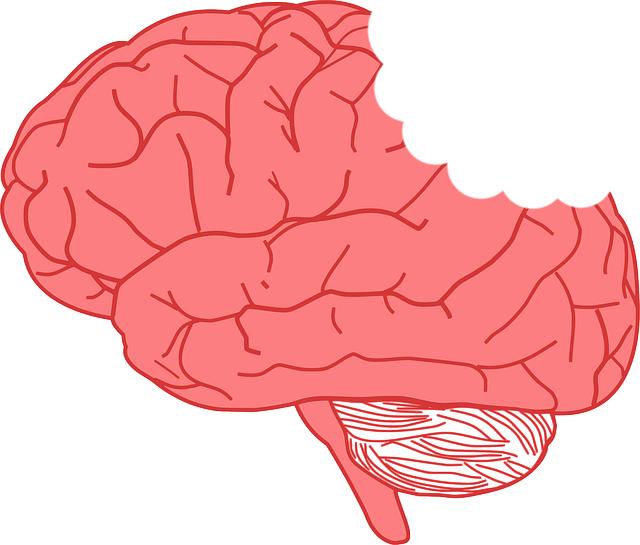 你昨晚睡不好嗎?可能你的大腦正在「吃掉」自己!