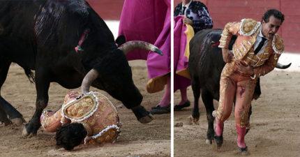 知名西班牙鬥牛士跌了一跤,蠻牛衝來當場貫穿「留下悲慘遺言」。(影片慎入)