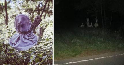 16張照片證明「森林恐懼症」比密集恐懼症還要恐怖N倍!你都不知道自己也有!