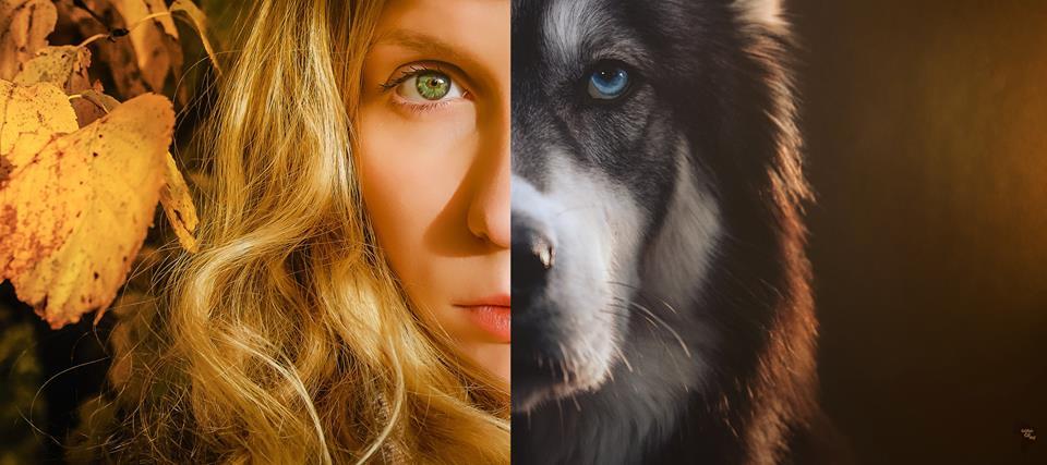 她每天都生活在男友的暴力之下,直到領養這隻哈士奇「藍眼睛」改變了她的一生。