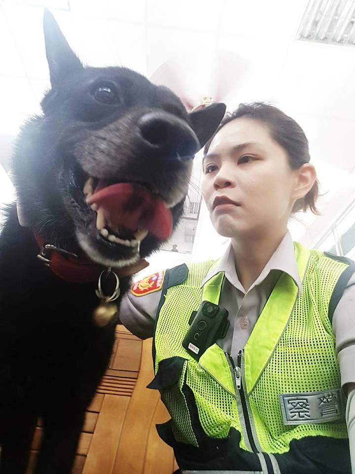 花蓮最可愛「警犬妞妞」病逝,員警心痛淚別:「下輩子別當狗」