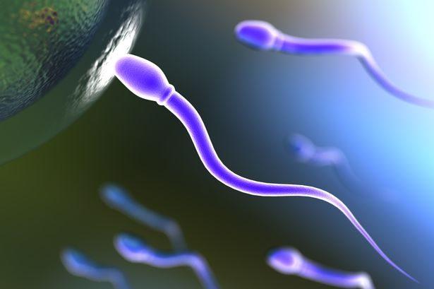 7500人研究指出「全球男生精子GG了」!但亞洲男...