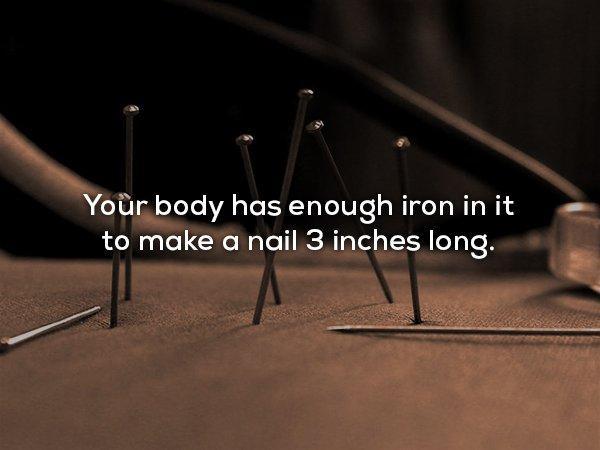 30個讓你無法掌握自己身體的「人體隱藏機密」 每天早上起床都長高1公分!