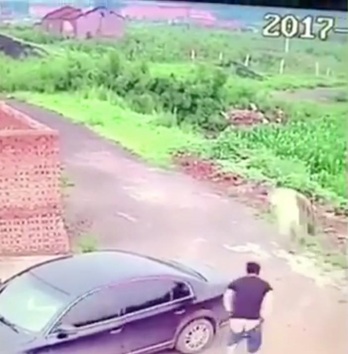高手偷車賊「3秒開車門」,一打開門被嚇到半死「超抱歉」。