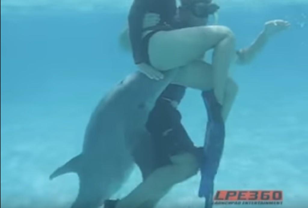 好色公海豚「企圖強暴人類女子」,不顧男友在旁「伸出GG猛侵犯」!(影片)