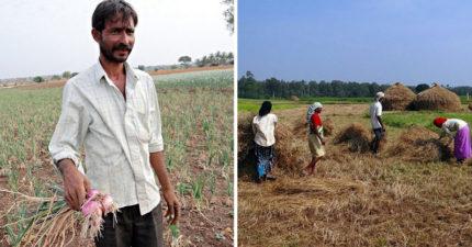印度有「6萬名農夫」自殺,「全球暖化」已經到了致命的地步了!每高一度死67人!