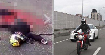 騎士國道摔車慘遭「多量車輾過」腰斬,屍體血肉模糊下身分離、內臟亂噴!