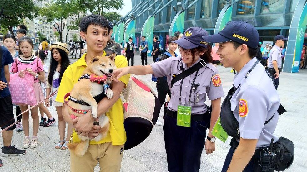 世大運開幕前小巨蛋被50隻「進擊的柴柴」包圍,成為史上最萌「狗狗外交」歡迎活動!