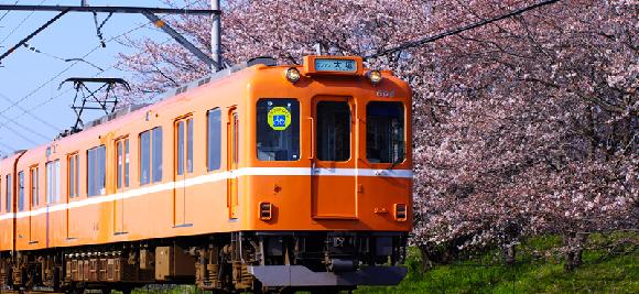 本來要被安樂死!日本推出史上第一台「貓咪咖啡館火車」,在貓咪的包圍下享受鐵路之旅!