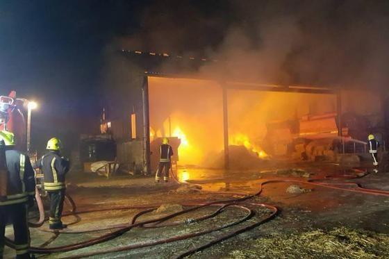 消防員6個月前從火場中英勇救出「一窩小豬」,半年後他們被宰變成「美味香腸」報答消防員。