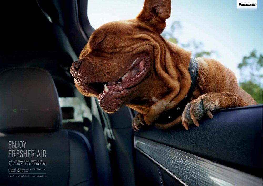 18個把現代廣告帶到「下一個境界」的超突破性廣告設計!#7 是不是邊緣人只差一條狗!