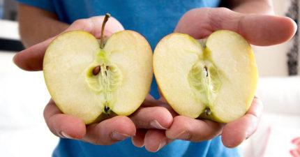 用刀子切蘋果弱掉了!一招教你超帥「徒手掰蘋果」!手的位置是關鍵!(影片)
