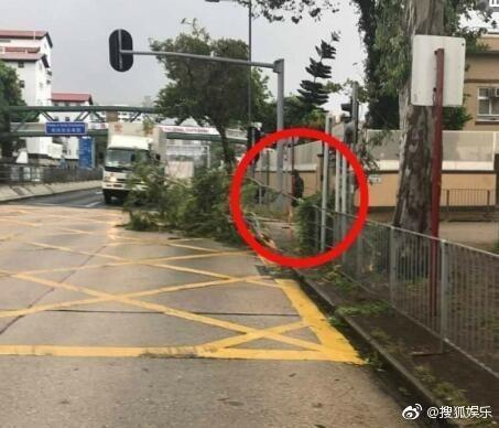 天鴿慘虐香港...網友遇「超帥大叔」徒手救災,仔細一看竟然是「賭神發哥!」