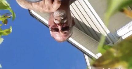 後院發現「還在錄影中」的手機,按播放驚「原來遇到空中災難」!