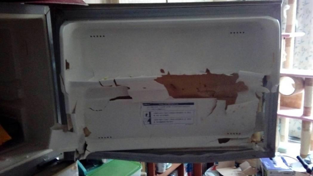一开冰箱就爆炸!30岁女全身受伤急送医,原来是「高丽菜汁」惹的祸! -photo-34