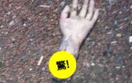 駕駛在公路上發現「恐怖手部斷肢」,警方封鎖完現場才發現「被耍了」!