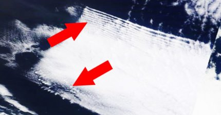 NASA衛星圖顯示最近重創美國的颶風「很可能是人為設計」!颶風專家:下一波攻擊有跡可循!