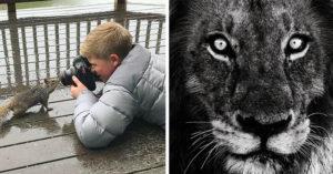 「已故鱷魚先生」13歲的兒子追隨爸爸腳步,年紀輕輕已是多項獎項的動物攝影天才! (30張)