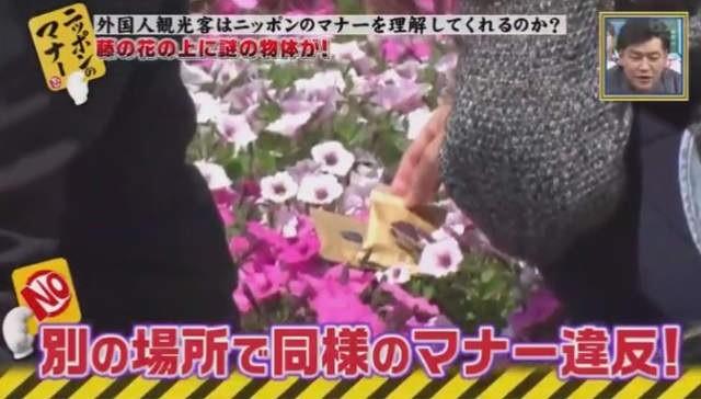 台灣人就是這樣!台遊客毀壞美景被勸阻,女子:「很輕阿,不會壞」誇張行徑全被播出!
