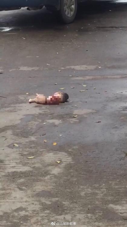 嬰兒慘被遺棄街頭,「左手臂+左腳不見」疑被流浪狗吃掉...(慎入)