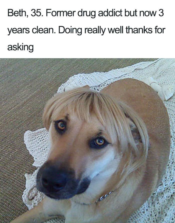 28個讓你想到身邊朋友的「狗狗簡介」!#5 這就是完全中二病啊!