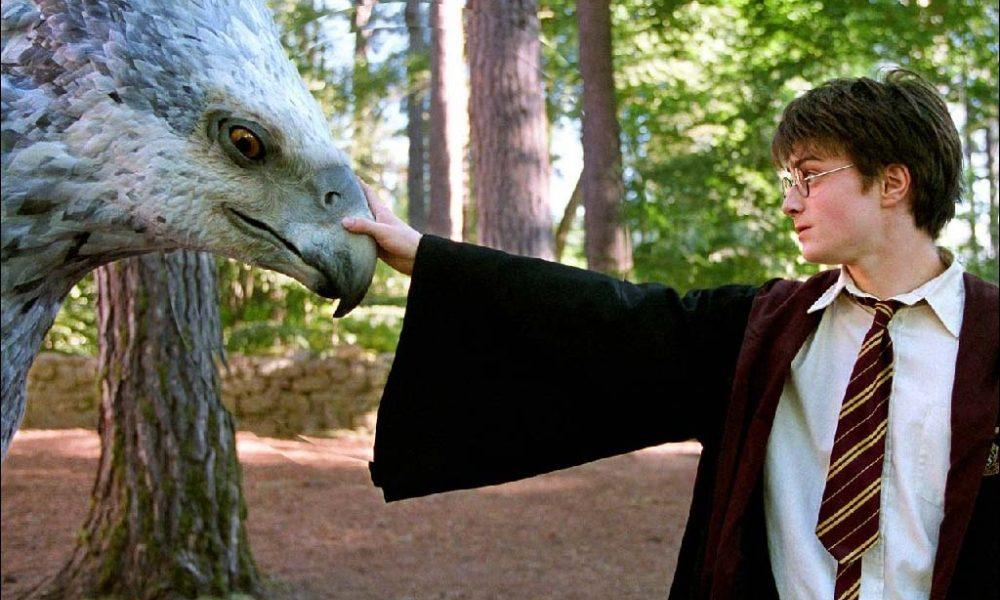 哈利波特跟紐特曾在霍格華茲「擦身而過」!證據在18年前「這一幕」可以找得到!